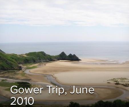 2010-Gower