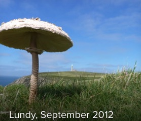 2012-Lundy